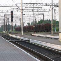 Рельсы, шпалы (станция Терещенская), Воронеж