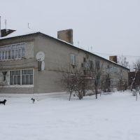 Дом родной, Воронеж