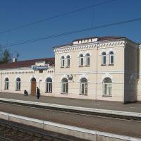 tereschenska station, Воронеж