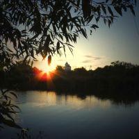 Ставок, Воронеж