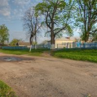Гудименная школа, Воронеж