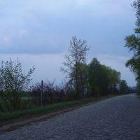 Дорога в с. Знобь-Трубчевская, Знобь-Новгородское