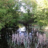 Озеро, Кириковка