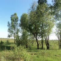 Біля озера, Кириковка