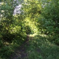 Стара дорога, Кириковка