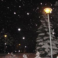 Снегопад, Конотоп