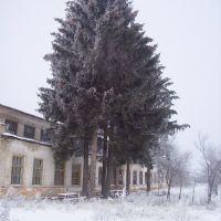 Агротехсервис (СХТ), Краснополье