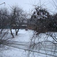 дворик ул.Мезеновская д.15, Краснополье