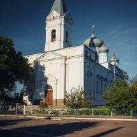Лебедин. Вознесенский собор.1858 г., Лебедин