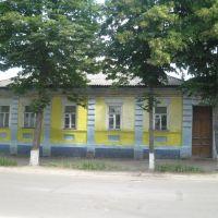 Жовтий дім, Лебедин