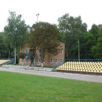 Администрация стадиона, Недригайлов
