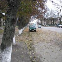 Киевское шоссе, Недригайлов