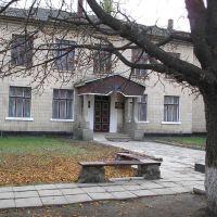 Старая школа, Недригайлов