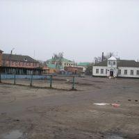 Базарная площадь, Недригайлов