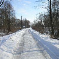 Снежная дорожка, Недригайлов