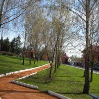 Сквер возле парка, Недригайлов