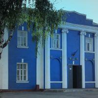 синий  будинок, Недригайлов