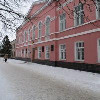 Школа №2 им. А. Ф. Иоффе, Ромны
