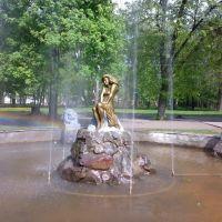 Фонтан в парке, Ромны
