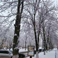 бульвар Шевченка, Ромны