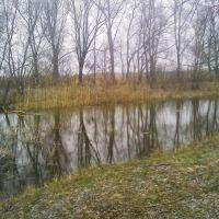 р. Роменка, Ромны