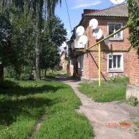 Улица Горького, во дворе д. 3, Середина-Буда