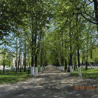 ПАРК-ВИД ОТ ЛЕНИНА, Середина-Буда