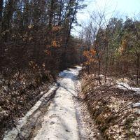 Дорога на питомник, Тростянец