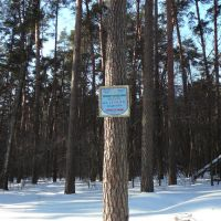 "mark of reserved tract ""Vesele"", Тростянец"