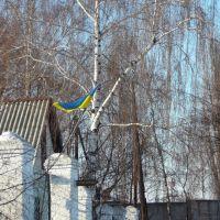 "flag on Grishyna street, Trostyanets, ""Abyssinya"" area, Тростянец"
