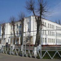 Школа №2-лицей, Шостка