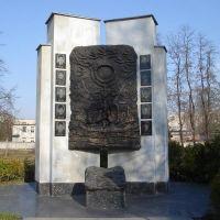 Памятник погибшим афганцам, Шостка