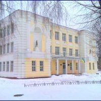 Школа №2 Лицей., Шостка