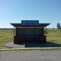 Остановка с.Шкуратовка, Шурупинское
