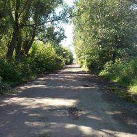 Дорога с.Воронино, Шурупинское