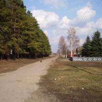 Шкуратовка, Шурупинское