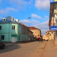 Shevchenka str., Бережаны
