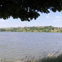 Berezhany Lake in summer 2008, Бережаны