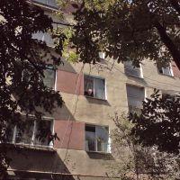 Berezhany , residential buildings ..., Бережаны