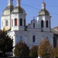 Церква Св. Трійці в Бережанах, Бережаны