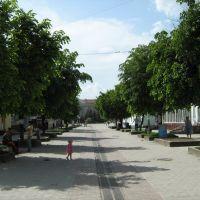 Центр, Борщев