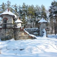 Зимовий Замковий ліс, Борщев