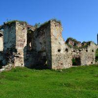 Останки дворца крепости в Подзамочке(1600г.), Бучач