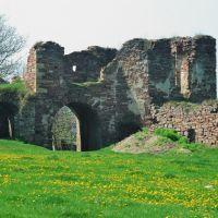 Підзамоцький замок, Бучач