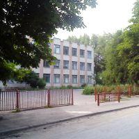 Школа, Великі Бірки, 2011, Великие Борки