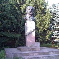 Погруддя Т.Шевченка, Великі Бірки, центр, 2011, Великие Борки