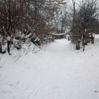 Зима, Великие Борки