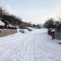 Зимова дорога, Великие Борки