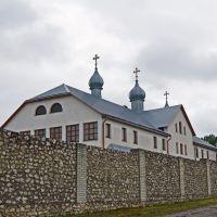 Монастир, Великие Борки