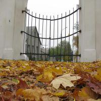 Зачинені ворота, Вишневец